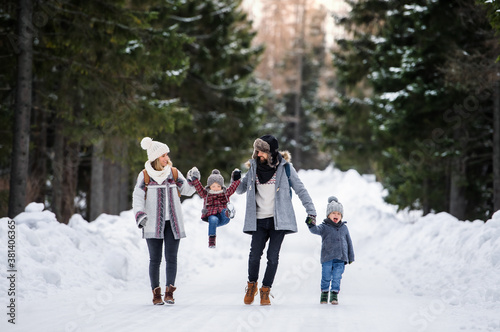 Fototapeta Father and mother with two small children in winter nature, walking in the snow. obraz
