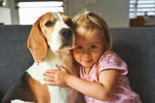 Child Hugging Tight Beagle Dog...