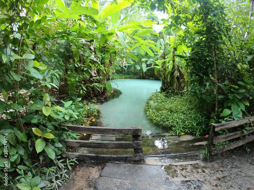 Obraz na plátně Lago azul verde floresta jalapão fervedouro