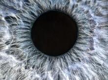 Human Blue And Grey Eye Extrem...