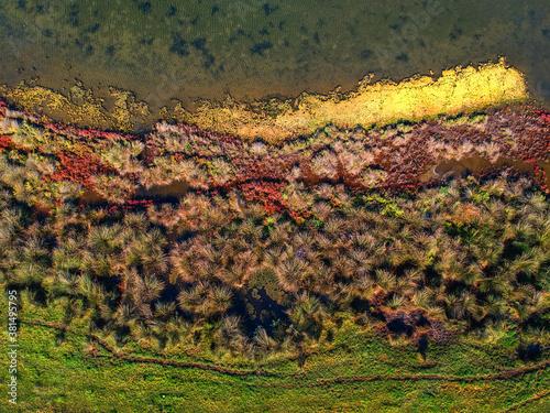I colori della natura - Sponde del lago fogliano