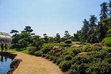 A Dirt Path In A Japanese Gard...