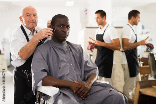 Cuadros en Lienzo African-American man getting haircut with clipper from professional skillful eld