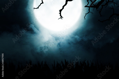 silhouette of grass with smoke and moonlight Canvas Print