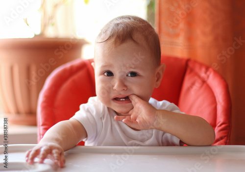 Fototapeta Adorable little baby boy sits in the highchair and chews his fingers