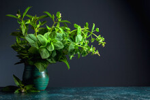 Bunch Of Fresh Mint In An Old ...