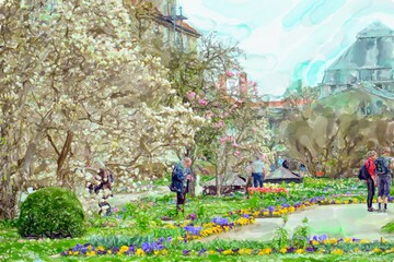 Fototapeta Ogrody Watercolor illustration of botanical garden in Munich. Cherry blossom time.