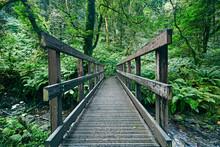 Wooden Bridge At St Nectan's Waterfall In Cornwall