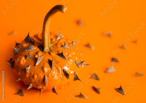 Spikes on pumpkin on the orange colored background Canvas-taulu