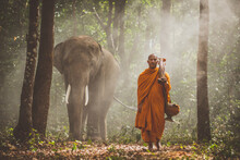 Thai Monks Walking In The Jung...