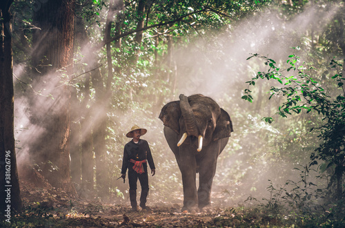 Papel de parede Man and his elephant in northern thailand