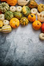 Beautiful Colorful Mini Pumpkins On Grac Concrete Background, Holiday Or Autumn Decoration