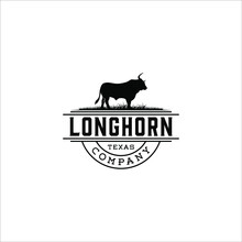 Longhorn Texas Cow Standing On...