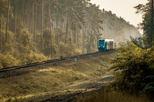 OPOLE, POLAND - Aug 18, 2020: The Regional Line Train Runs Through The Forest