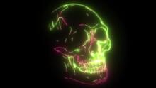 Human Skull Video Graphics Art