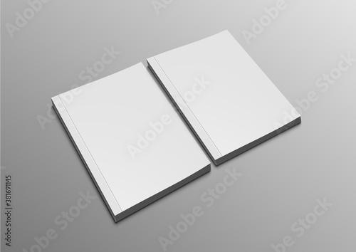 Obraz Two Blank Catalogs, Magazines Or Books Mockup - fototapety do salonu