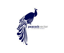 Peacock Logo Design Vector Template, Peacock Bird Illustration