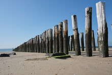Wooden Posts Of A Beach Erosio...