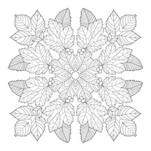 Floral Mandala From Oak, Birch, Aspen Leaves, Berries With Simple Patterns On White Isolated Background. For Coloring Book Pages.