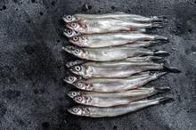 Raw Fresh Capelin Fish. Black ...