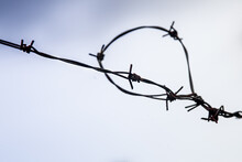 Barbed Wire Fences With Background Of Blue Cloudy Sky. Wire With Clusters Of Short, Sharp Spikes Set At Intervals Along It, Used To Make Fences On Borders, Jails, Military Objects