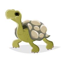 Funny Cartoon Turtle Vector Illustration