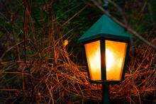 October Lantern Orange Lightin...