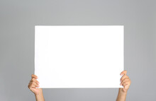 Man Holding White Blank Poster On Grey Background, Closeup. Mockup For Design