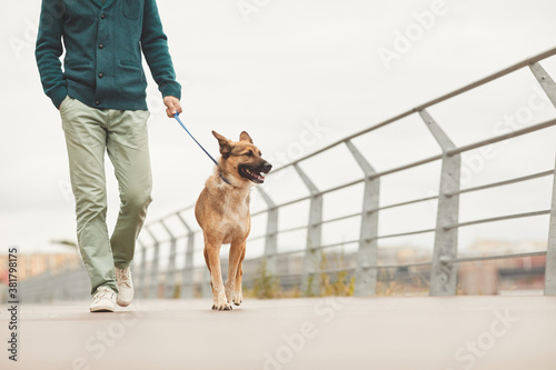 Fotografía Close-up of man walking with his German shepherd on a leash along the bridge in