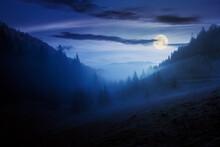 Morning Mist In Apuseni Natura...