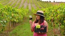 A Woman In A Hat Tastes A Glass Of Wine And Holds A Box Of Grapes. Person On The Farm In The Harvest Season. High Quality 4k Footage