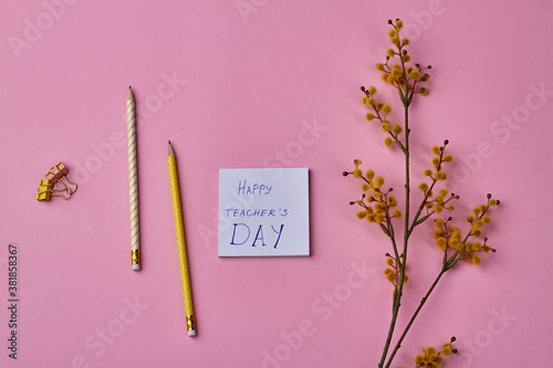 Composition of items for happy teacher's day. Pencils, herb and paper clips on pink background.