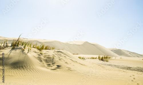 Valokuvatapetti Te Paki giant sand dunes