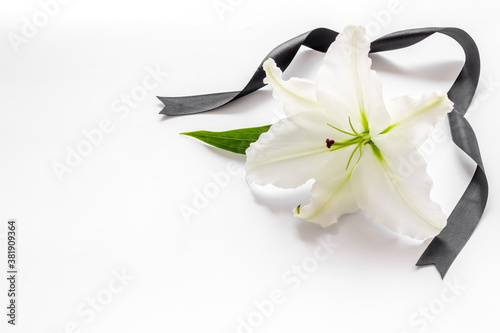 Funeral symbols. White lily with black ribbon, top view Canvas
