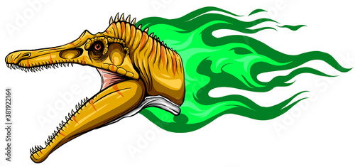 Fotografia, Obraz Vector Cartoon Dragon Head Isolated On White Background