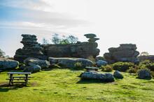 Brimham Rocks, Harrogate, North Yorkshire, England.