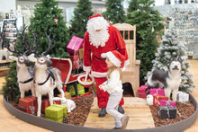Girl In A Hat Visiting Santa Claus