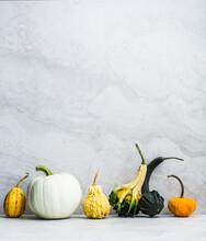 Artisanal Pumpkins And Gourds ...