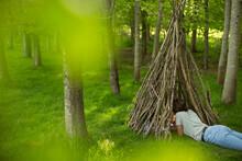 Woman Relaxing In Branch Teepe...