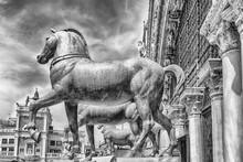 The Bronze Replica Horses Of S...