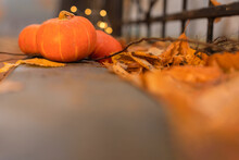 A Background Of A Yellow Pumpkin Is On The Ground Against The Fence, Bokeh Lights, Fog. Copy Space. The Concept Of Creative Harvest, Thanksgiving, Halloween.