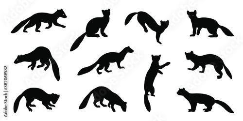Fotografie, Obraz marten silhouettes