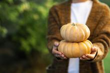 Woman's Hands In Autumn Orange Cardigan Holding Pumpkins.