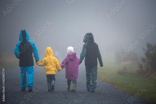 Fototapeta Four children, siblings boys and girl, walking on a rural path on a foggy autumn