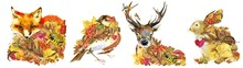 Forest Animals Stickers Set. Fox. Bird. Deer. Hare. Autumn Nature. Colorful Leaves. Wildlife. Woodland Watercolor Illustration.