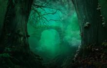 Fantasy Forest Background. Stone Bridge Or Gates. Smoke Blue Haze. Old Massive Crooked Trees. Branch, Tinder Fungi