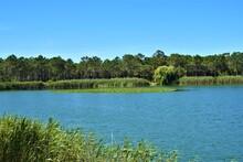 Lagoa, Perto De Alcobaça