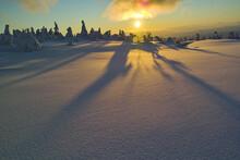夕焼けに色づく雪原