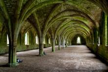 Fountains Abbey, England, UK,fountains Abbey, England, Uk