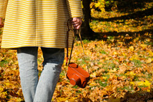 A Girl Walks In The Park Holding A Vintage Camera In A Brown Leather Case. Colorful Autumn View.